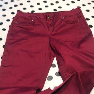 Maurices Merlot colored pants size L – R